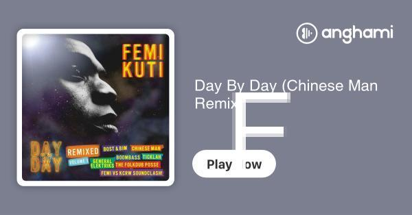 Femi Kuti - Day By Day (Chinese Man Remix)   Play for free