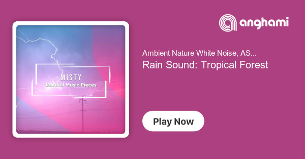 Ambient Nature White Noise, ASMR Rain Sounds, Rain Hard