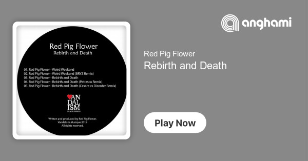 Red Pig Flower Rebirth And Death Play On Anghami