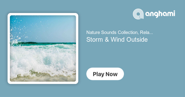 Nature Sounds Collection, Relaxing Nature Sounds Collection