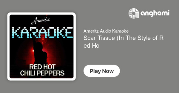 Ameritz Audio Karaoke - Scar Tissue (In The Style of Red Hot